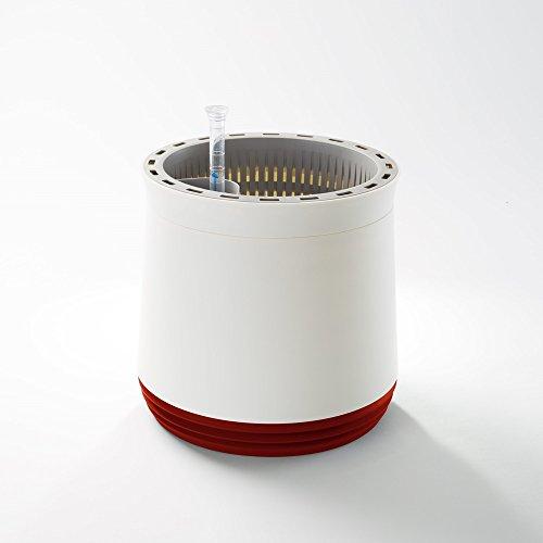 innovativer pflanzentopf als hochwirksamer luftreiniger airy box nat rliche luftreinigung. Black Bedroom Furniture Sets. Home Design Ideas